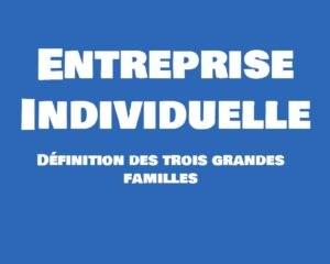 entreprise individuelle definition