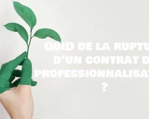 rupture contrat de professionnalisation